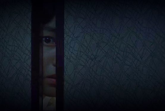 Park Chan-Wook: A szobalány